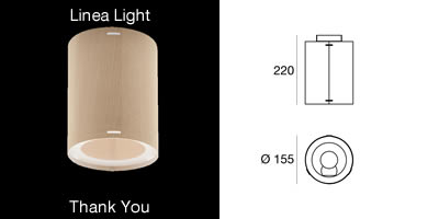 Linea Light Thank You_S
